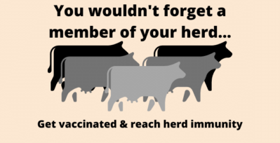 Five cows, text reads: you wouldn't forget a member of your herd... get vaccinated and reach herd immunity